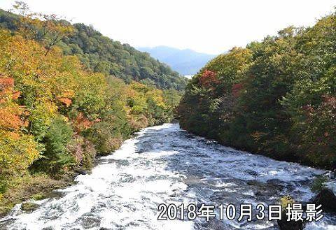 2018年10月3日竜頭の滝の滝上紅葉の様子