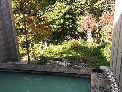 露天風呂から見えた森の景色