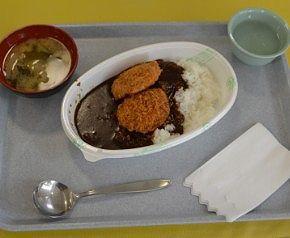 ヒレカツ100時間カレーと味噌汁