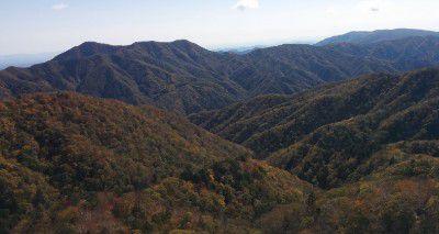 中禅寺スカイライン半月山線ドライブ中の景色