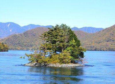 遊覧船から見えた上野島