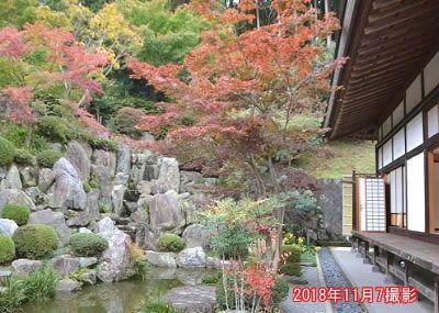 宝徳寺池の周りの紅葉の様子