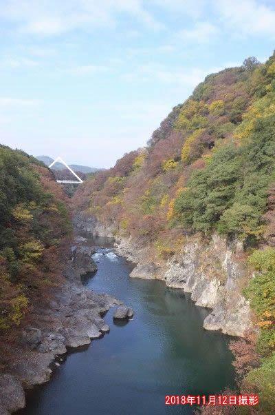 高津戸橋からの高津戸峡の紅葉の様子