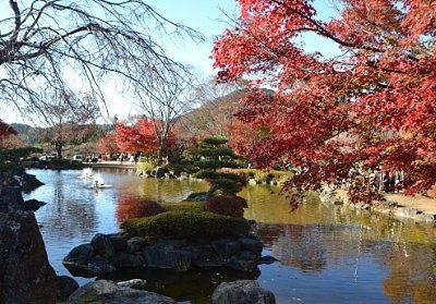 日本庭園と紅葉