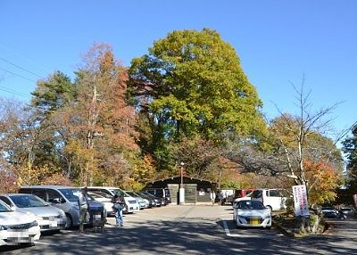 公園入口の駐車場の様子