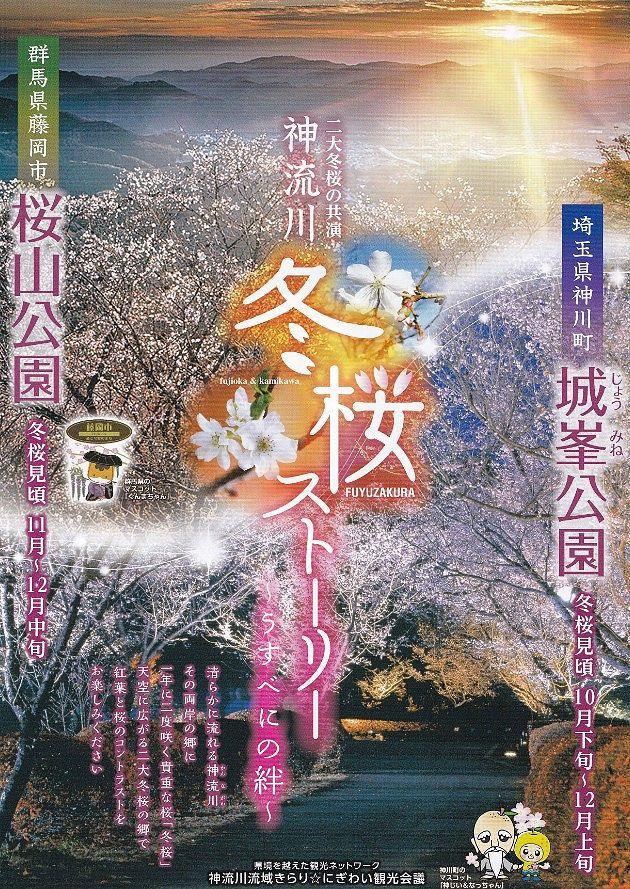 冬桜ストーリー