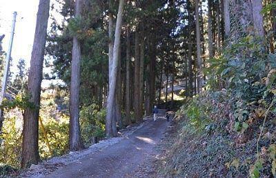 郷社城峯神社への道