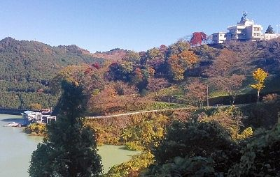 中腹から見たダム周りの景色