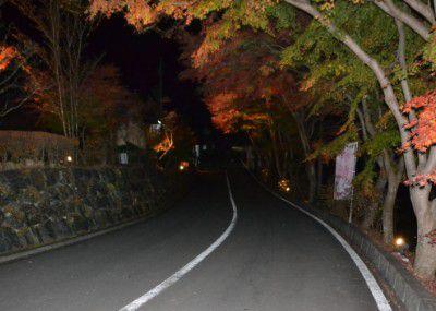 ライトアップに行った時の道路の様子