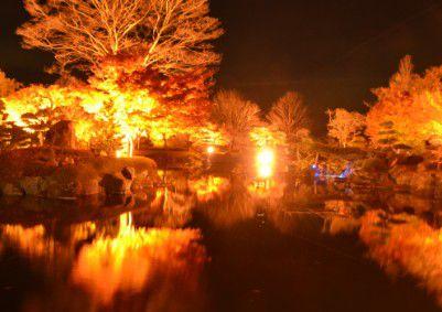 日本庭園の紅葉ライトアップ