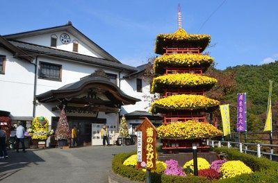 五重塔の菊飾り