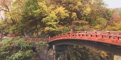 橋の袂にある一枚岩と紅葉