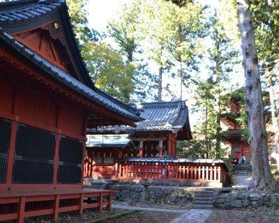 拝殿と本殿と三重塔