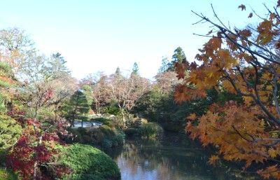 日本庭園の様子