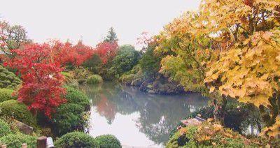 紅葉がピークな時の逍遥園の様子