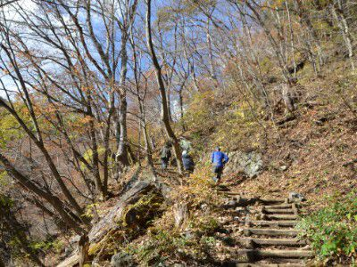 登りの階段がずっと続いていた遊歩道の様子