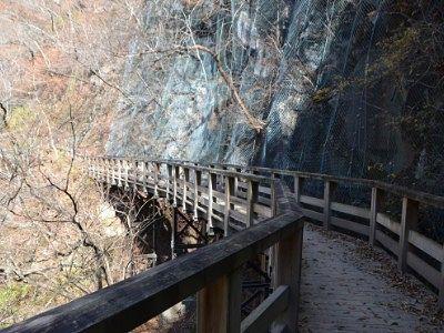 遊歩道の橋