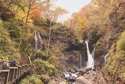 紅葉の裏見の滝