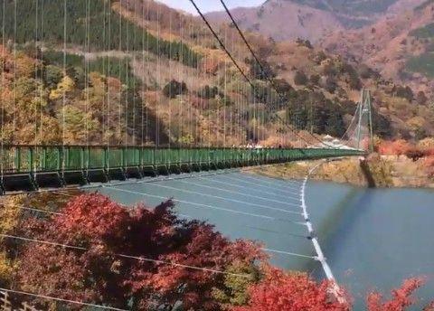 もみじ谷大吊橋紅葉