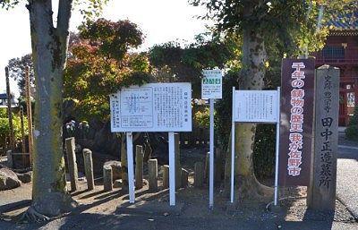田中正造扇の墓