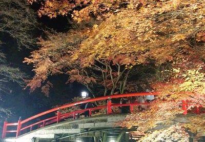 河鹿橋紅葉ライトアップの様子2