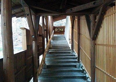 森のこだまへの階段