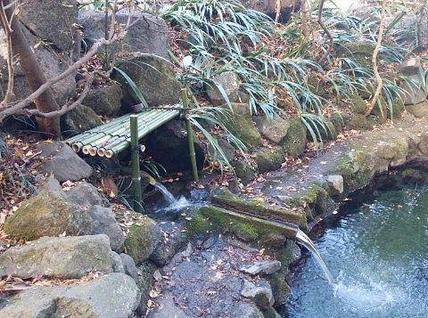 池に注ぐ湧き水