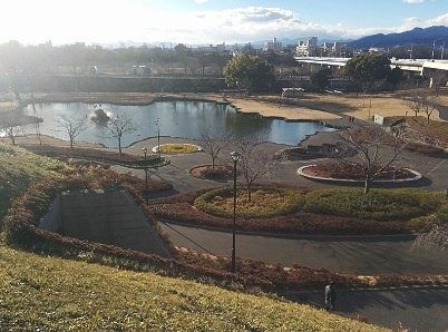 展望台から前橋公園の眺め