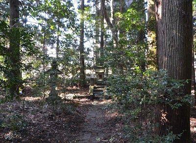 森の境内の様子