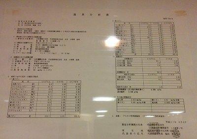 男湯大浴場に掲示されてた温泉分析書