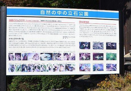 立石公園のオオムラサキなどの説明書き