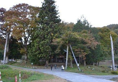 御柱と木々に囲まれてた前宮の社殿