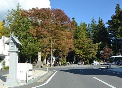 道路から見た諏訪大社秋宮