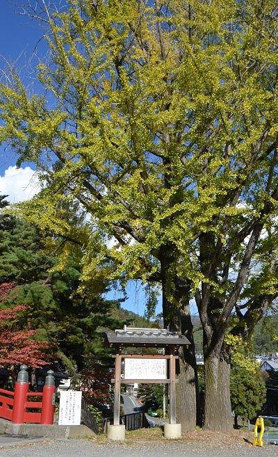 霞ケ城跡(手塚城)
