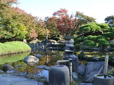 日本庭園と池