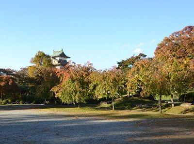 広かった高島公園
