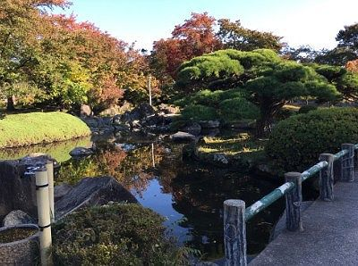 本丸御殿跡の日本庭園