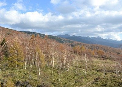 北八ヶ岳ロープウェイのゴンドラからの景色
