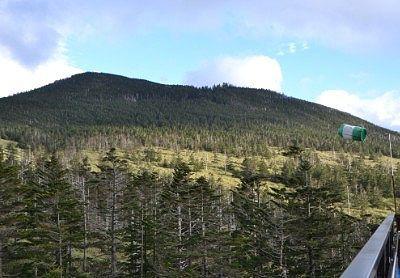 山頂駅展望台から縞枯山方向の景色