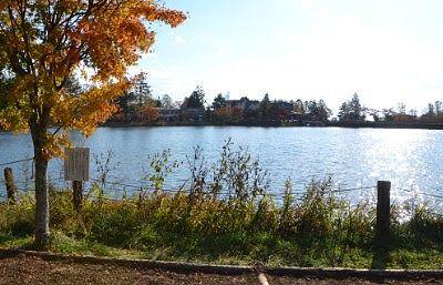 紅葉と蓼科湖