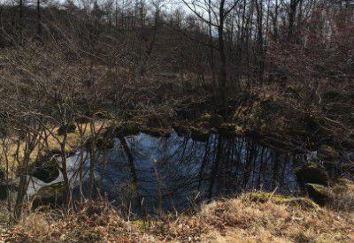 散策路にあった池
