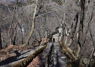 観瀑台手前の遊歩道