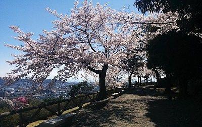水道山公園遊歩道の様子