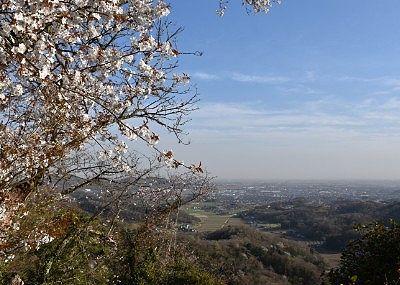 佐野市が一望できた景色