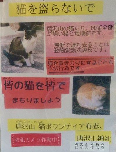 猫を盗らないでのお知らせ