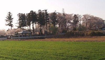 田んぼの中の品宮(生品神社)