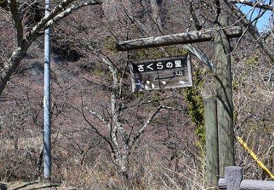 県立妙義公園駐車場側のさくらの里入口
