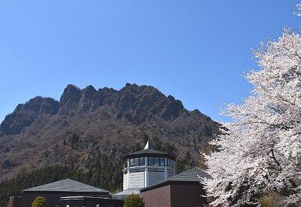 妙義山と桜