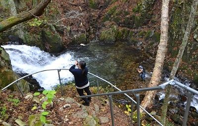 遊歩道から見える巣栗渓谷の滝つぼ
