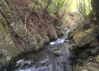 巣栗渓谷の滝下流の様子